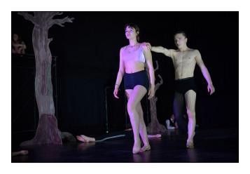 6 _Arrivé Dracu-pole dance